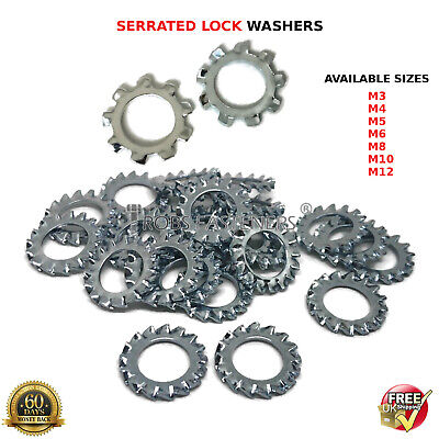 M3 M4 M5 M6 M8 M10 M12 Lock Washers External Toothed Serrated Shakeproof Bzp