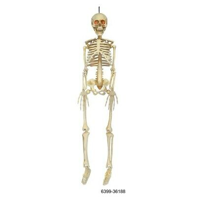 5 ft. Halloween Life Size Skeleton LED Lit Eyes Hanging Prop