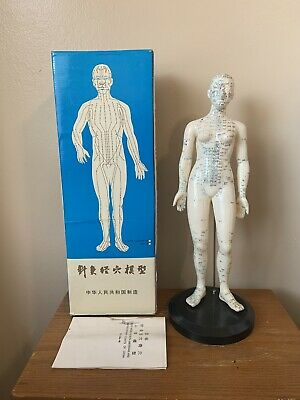 """Vintage Rubber Acupuncture Points Human Female Model Mannequin On Stand 20"""" Tall"""