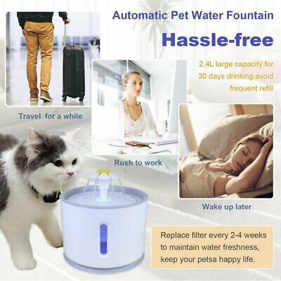 LED USB Automatic Electric Pet Water Fountain Dog Drinking Dispenser 2.4L FO