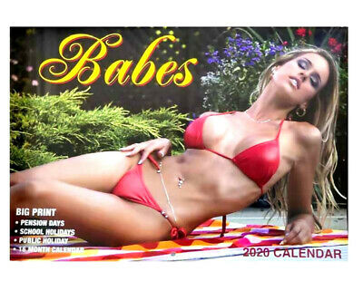 2020 Calendar Rectangle Wall Calendar 16 Months Calendar-Babes Baby