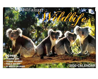 2020 Calendar Rectangle Wall Calendar 16 Months Calendar-Australian Wildlife