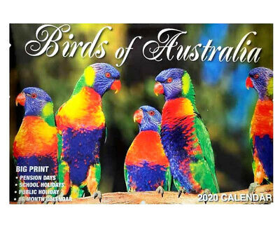 2020 Calendar Rectangle Wall Calendar 16 Months-Birds Of Australia
