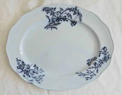 Platter from England, Cauldon, flow blue, botanical design