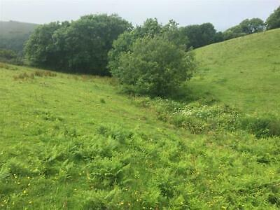 Pasture land 3.6 acres. Lynton, North Devon.
