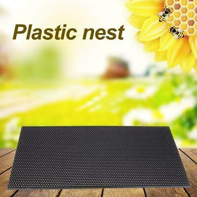 Beehive Brood Bee PVC Plastic Wax Honeycomb Box Beeswax Sheet x 425 mm 210 O9T1
