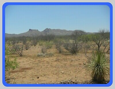 Southern Arizona Land~Beautiful Area~Actual Pics~No Reserve + $99 Doc Fee!