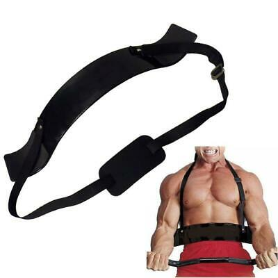 Gym Biceps Isolator Blaster Barbell Bar Curl Lifting Weight Arm Training DE D6S2