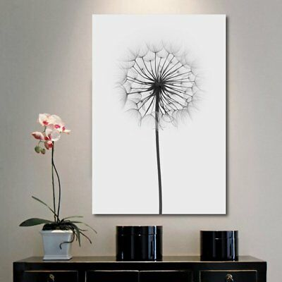 Unframed Black & White  Dandelion Canvas Print  Wall Art Pictures Home Decor