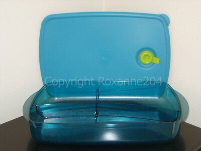 Tupperware Vent 'N Serve Divided Dish Container (1) **New**