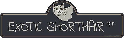 Exotic Shorthair Street Sign Cat Lover Funny Home D�cor