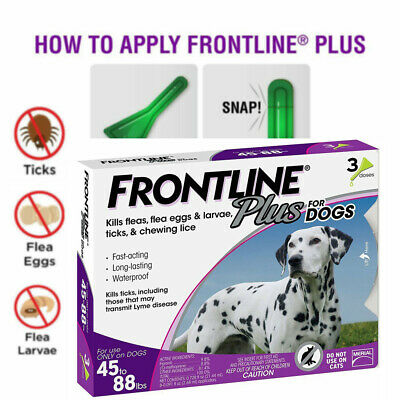 Frontline Plus for Dogs (45-88 lbs) Flea and Tick Control 3 Months, 3 Doses