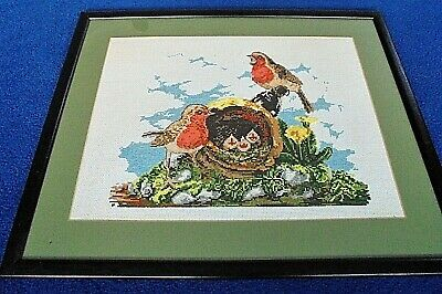 Counted cross stitch picture large, framed, birds, robin