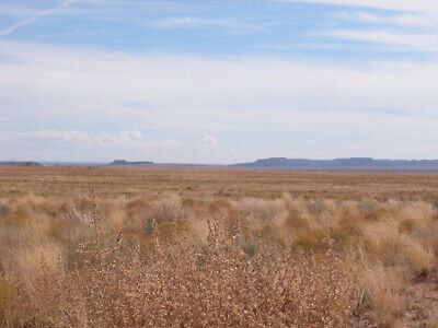 1.14 Acres -  Your Next Vacation Property In Navajo County Arizona