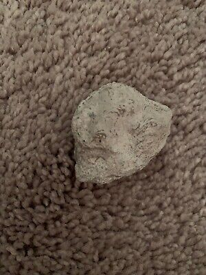 Ancient Native American Indian stone art/tool