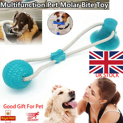 Pet Molar Bite Toy Multifunction Floor Suction Cup Dog Toy With Ball UK Stock