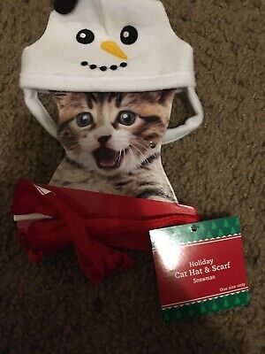 Holiday Christmas Cat Hat And Scarf/ Snowman/one Size Fits Only/ 1102