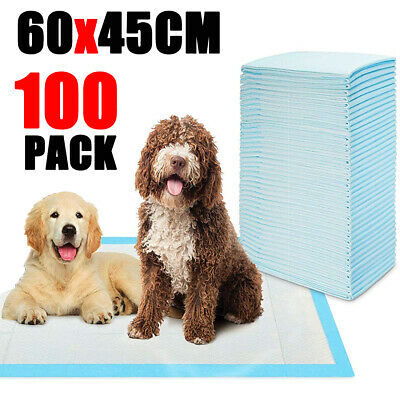 100X Scented Dog Pet Puppy Training Pads 60x45cm Toilet Wee Super Absorbent 2