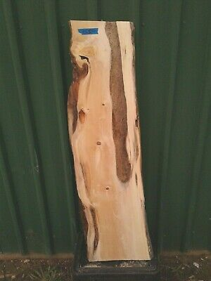Huon Pine Slab Craft Woodworking Timber Board Wood #3