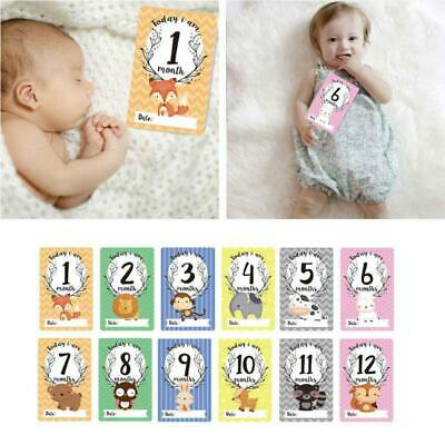 12 Sheet Milestone Photo Sharing Cards Set Baby Age Cards Birth Month Card Photo