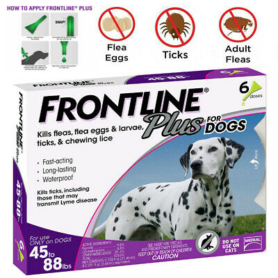 Frontline Plus for Dogs 45-88 lbs 6 months Flea and Tick Treatment, 6 Doses