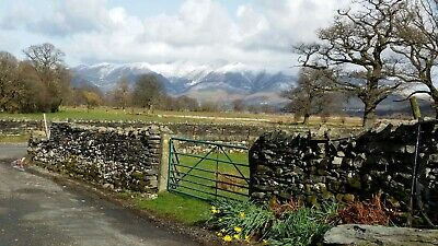 Self Catering Holiday Lodge Cottage Lake District Cumbria 29/11/19 Field House