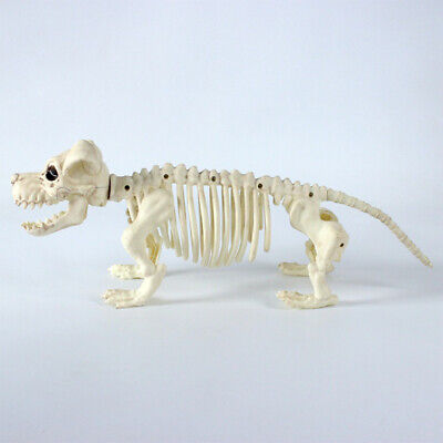 1PC Halloween Decor Prop Simulation Dog Plastic Skeleton Bone Ornament for Party