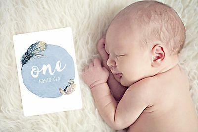 Boys Baby Milestone Cards. Monthly Pack 13 Cards. Boho feathers. New & Sealed