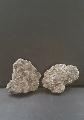 Superb Upper Paleolithic/mesolithic Portable male/ female granite profiles