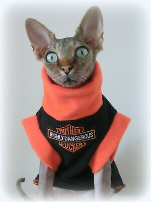 HIGHLY DANGEROUS cat jumper for a Sphynx  cat, Sphynx clothes, pet top HOTSPHYNX