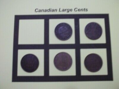 5 Canadian Large Cents 5 Coins  (CLC6)