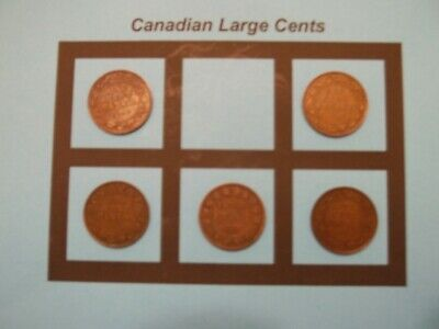 5 Canadian Large Cents 5 Coins  (CLC8)