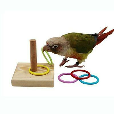 Wooden Pet Bird Parrot Platform Plastic Ring Intelligence Training Chew Toy