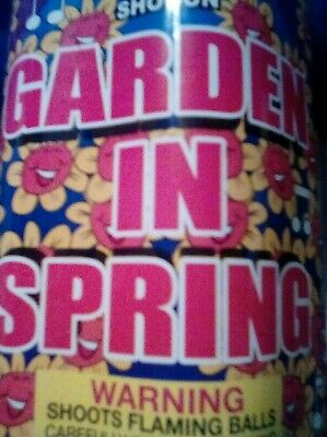 Firework Labels COLLECTABLE Garden in Spring VINTAGE LABEL LRG  LABEL see pix