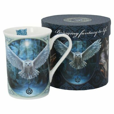 Anne Stokes boxed mug featuring the Awaken Your Magic design