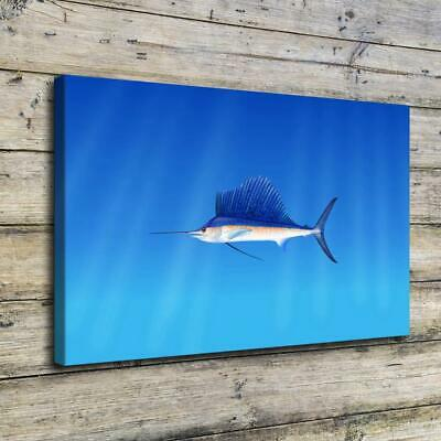 """12""""x18""""Animals & fish HD Canvas prints Painting Home Room Decor Picture Wall art"""