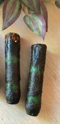 """(2) TIMER Taper Drip Candle Grungy Burnt Green 6"""" Inch Primitive AA Battery"""