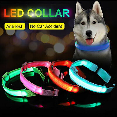 SAFETY LED Dog Pet Light Up Collar Night Glow Adjustable Bright 6 Color Leash XS