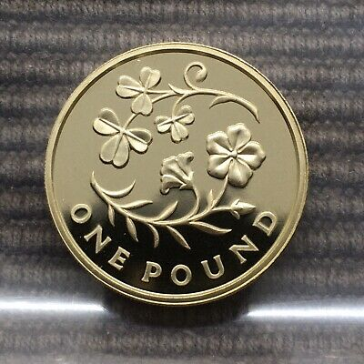 2014 Floral Emblems N. Ireland PROOF £1 pound Royal Mint coin Shamrock Flax