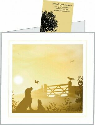 Sympathy Cards Dog with Seed Packets (25 pack)