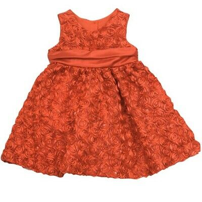 Rare Editions Baby Girl Holiday Rosette Dress Size 18 Months Sleeveless Rose Red
