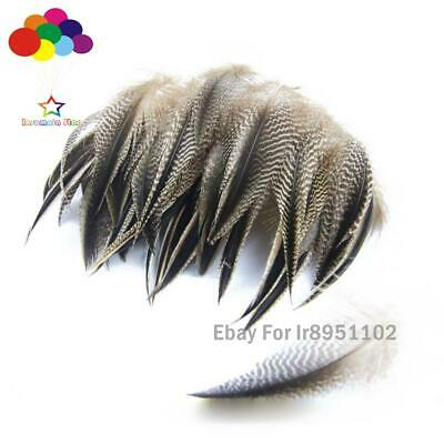 hot Premium Diy 10-100PCS natural Pheasant Tail Feathers 5-10cm/2-4inch