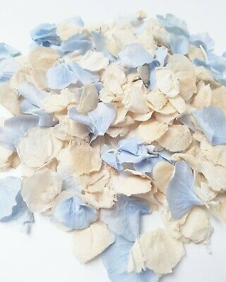 Jasmin Real Flower confetti mix, Dusty blue and Ivory