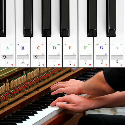 Transparent Music Piano Learner Stickers Note Keyboard Piano Stickers 15.5*40mm