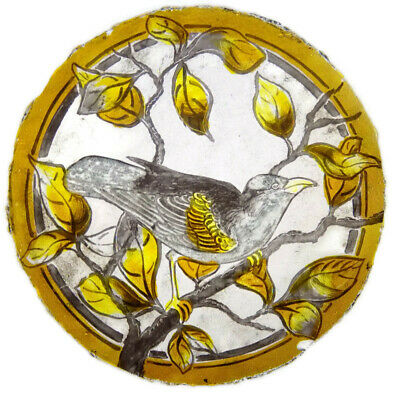 Victorian Antique Leaded Stained Glass Rondel Window HAND PAINTED Bird Leaves 🌈