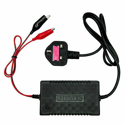 12 Volt Intelligent Motorcycle Motorbike Battery Charger Automatic Smart Trickle