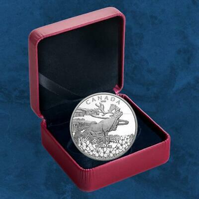 Canada - Forget - Me - not - 20 $2019 Pf - Silver - Conservation - Moose