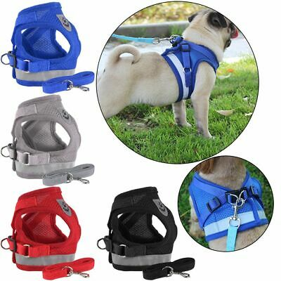 Small Pet Dog Puppy Harness Breathable Mesh and Leash Set Vest Chest Strap Soft