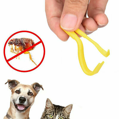 Tick Lice Remover Removal Tool X2 Sizes Pack Dog Cat Horse Puppy Human UK