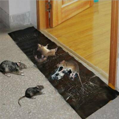 Mice Mouse Rodent Traps Board Super Sticky Rat Snake Bugs Catching Board HY